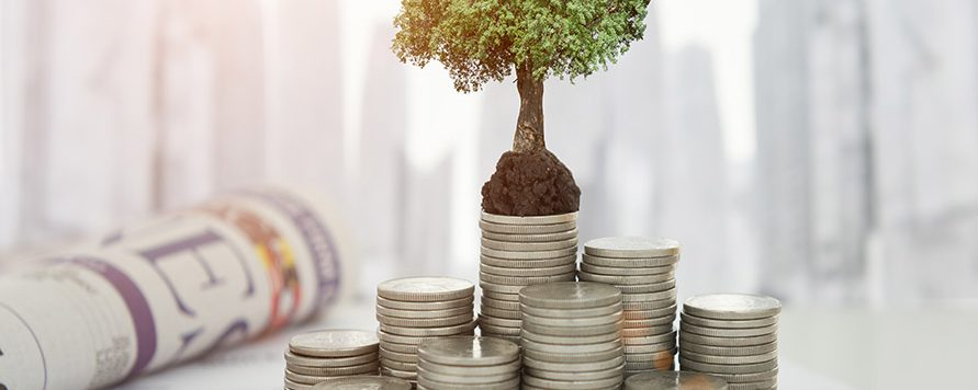 Step 3 - Grow More Money